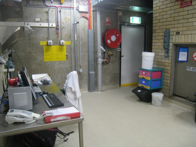 Instead, I was introduce to my new workplace, the basement of the Australian Museum Spirit House